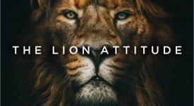 th-lion-motivate